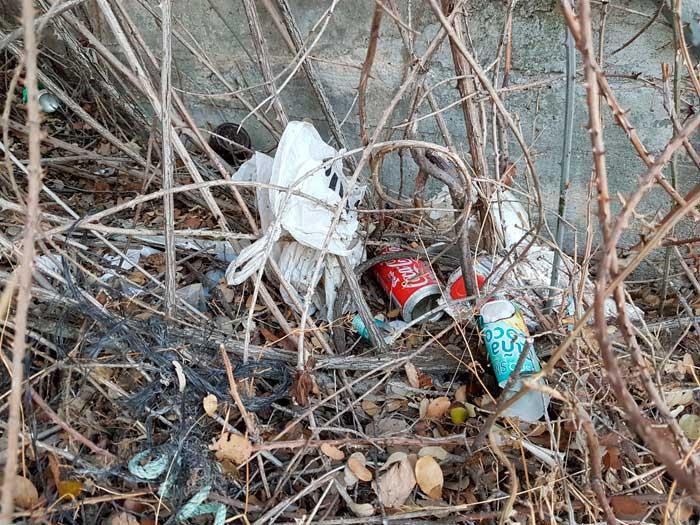 Basura acumulada en la orilla